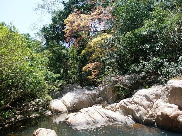 Vườn quốc gia Núi Chúa ở Ninh Thuận